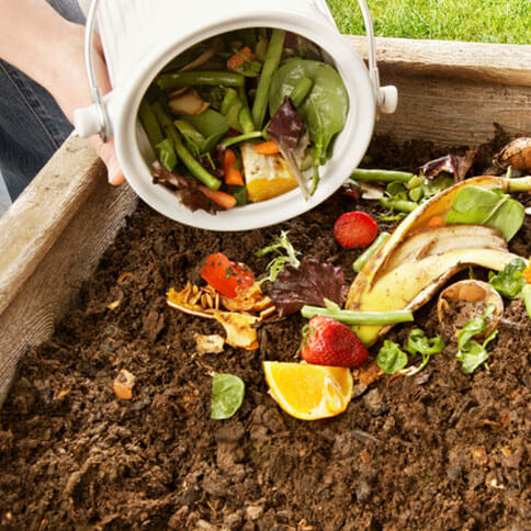Pouring food scraps into a compost pile.