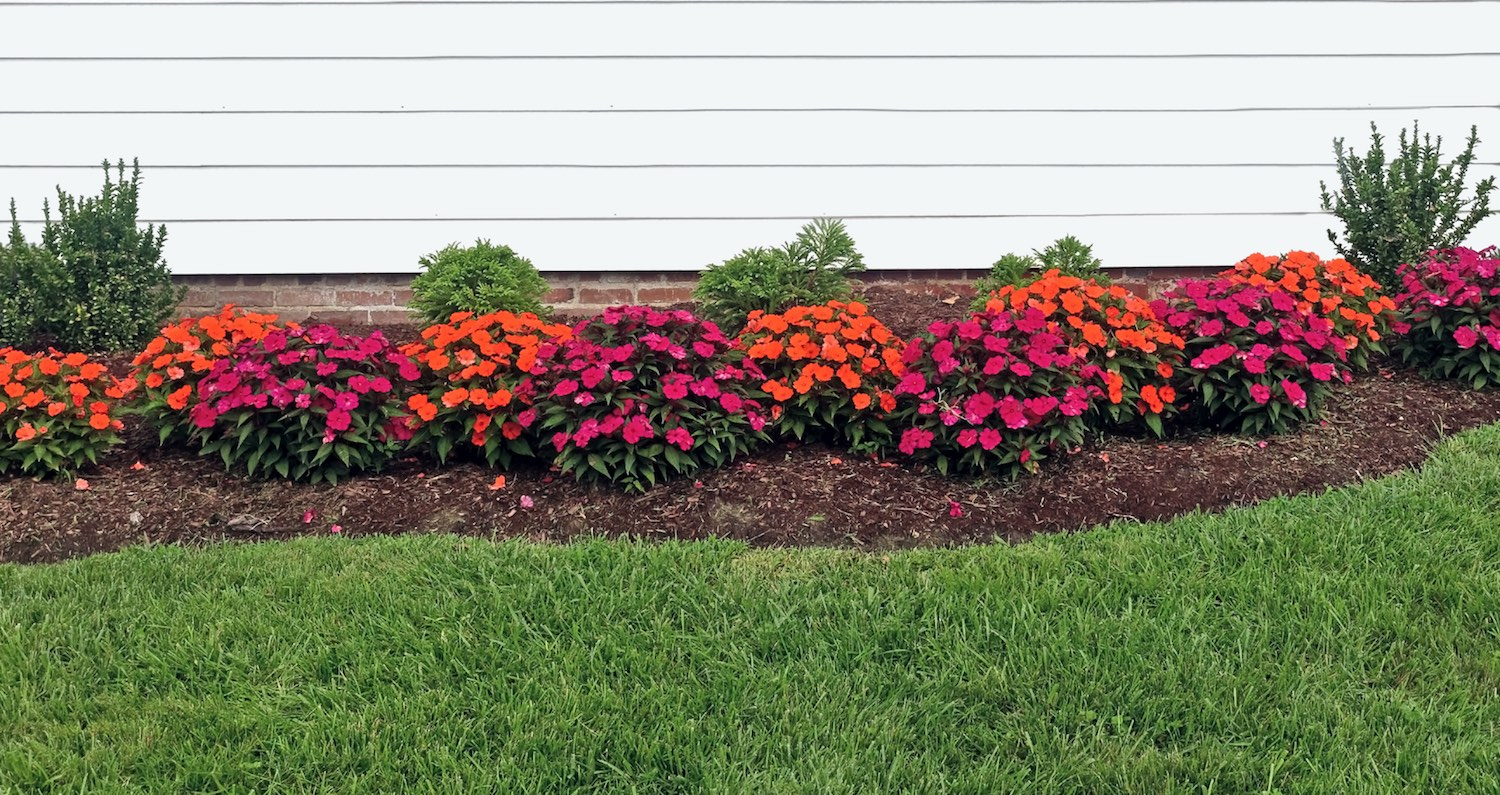Mulch Vs Rocks Reddi Lawn Maintenance